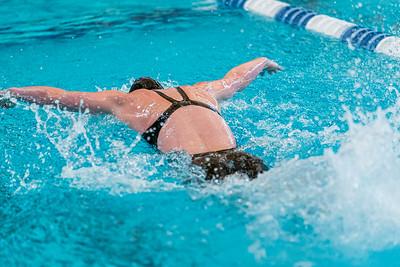 KO_swim_dive-02956