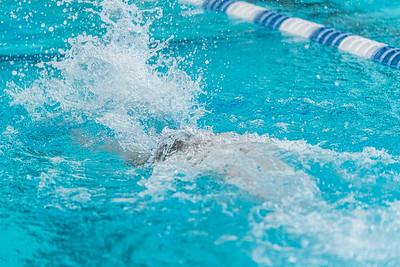 KO_swim_dive-02960
