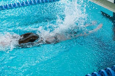KO_swim_dive-02939