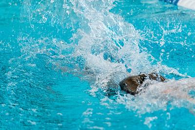 KO_swim_dive-02948