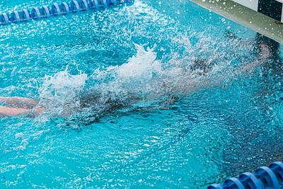 KO_swim_dive-02942