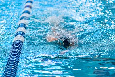 KO_swim_dive-00034