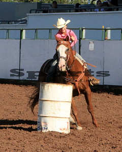 Western Games/Barrel Racing-2nd 12 Riders