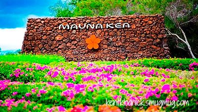 Hawaii Manua Kea Hotel
