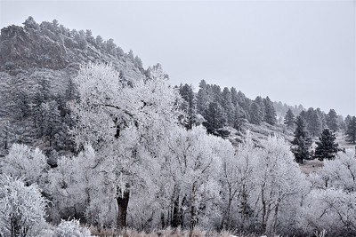 Klondike 2018 and Winter Weather