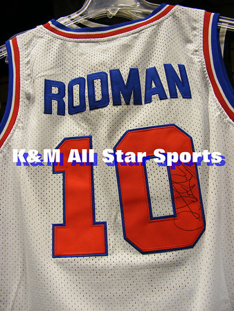 ebay rodman