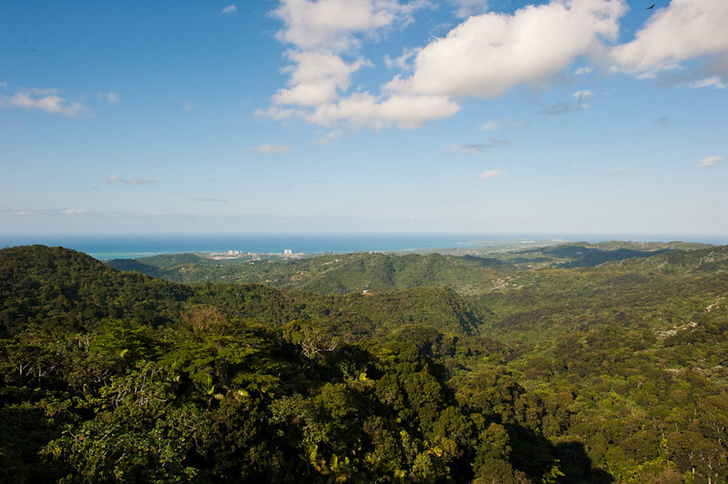 Puerto Rico-273