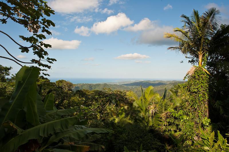 Puerto Rico-272
