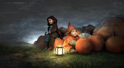 Night Fall by Fire Light