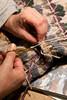Cutting Steek 2
