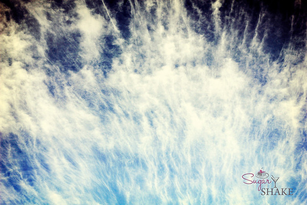 Ocean or sky? You guess! © 2012 Sugar + Shake
