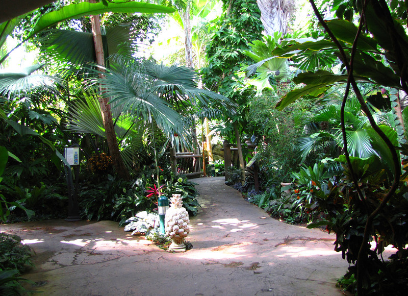 Boettcher Memorial Tropical Conservatory