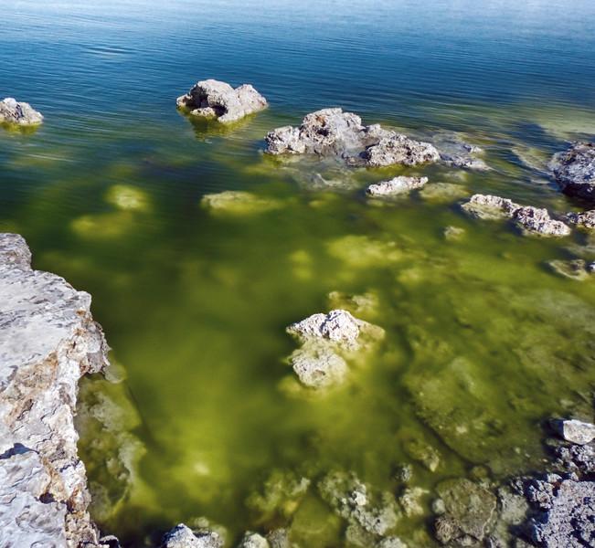 Mono Lake - California - April 9, 2017