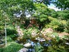 Reptile Gardens - June 13, 2017 - TORTUGA FALLS