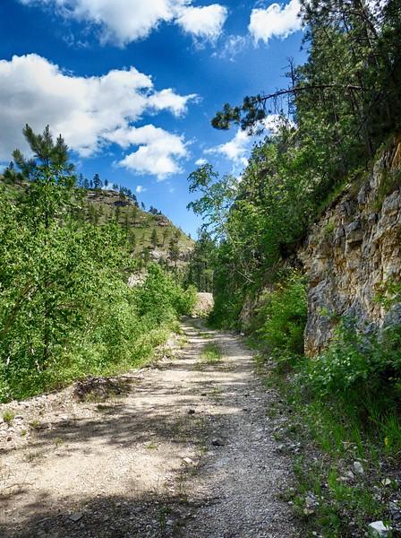 Stagebarn (Botany) Canyon - Hike - June 14, 2017