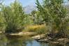 Nature Center - Ogden Utah