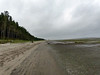 Willapa National Wildlife Refuge