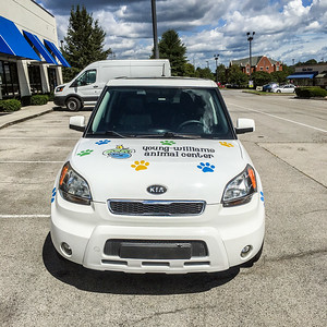 Knoxville-Vehicle-Graphics-Toyota-Knoxville-Young-Williams-Animal-Center-3