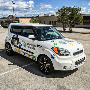 Knoxville-Vehicle-Graphics-Toyota-Knoxville-Young-Williams-Animal-Center-4