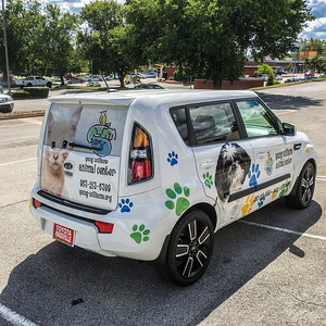Knoxville-Vehicle-Graphics-Toyota-Knoxville-Young-Williams-Animal-Center-6