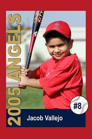 #08 Jacob Vallejo, Ocean View Pony Baseball, 2005 Shetland Angels