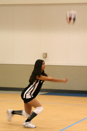 #07 Brittany Camacho, 2006 ACEZ 14-1 Volleyball