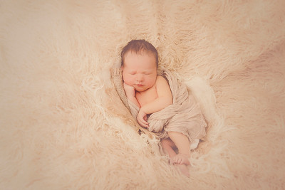Kober Newborn 2016