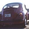 1981-01 VW Beetle 002