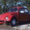 1981-01 VW Beetle 001