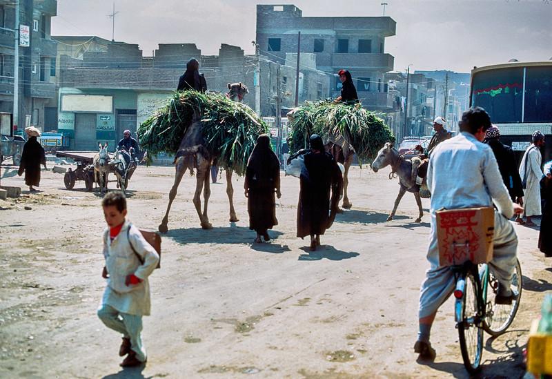 Egypt_1985_b2019_flat