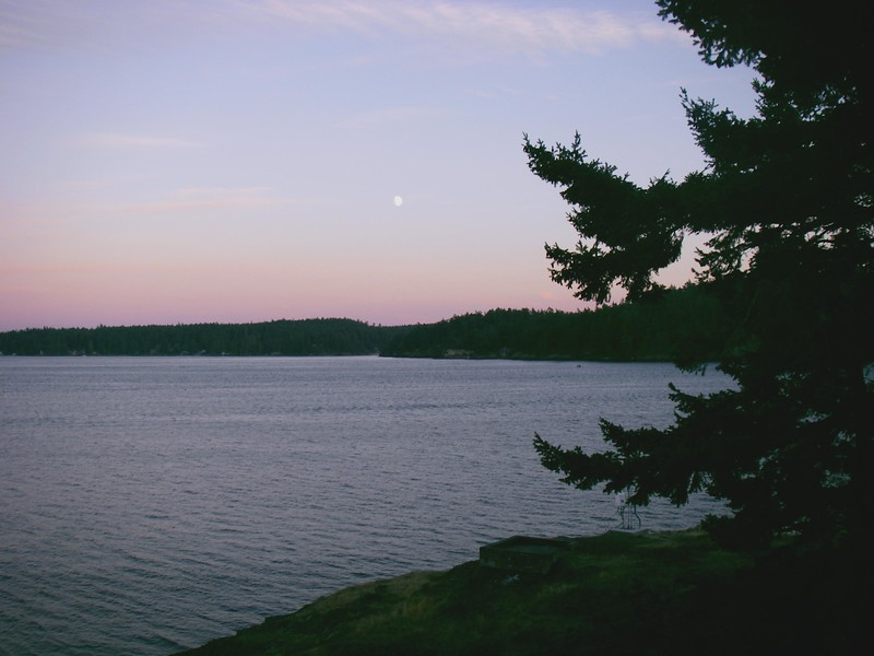 View from Friday Harbor cabin