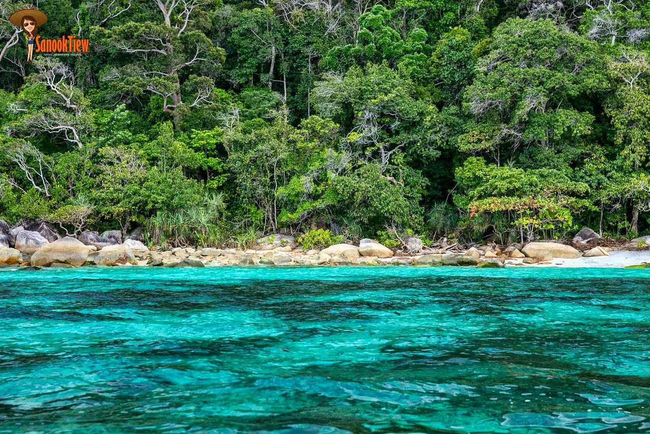 เกาะหลีเป๊ะ เที่ยวเดือนไหน ดี? สวยที่สุด? ดูนี่ค่ะ นี่คือ สีน้ำทะเล ในช่วงปลายโลว์ซีซั่น