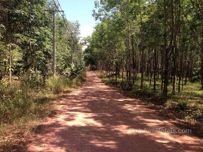 A dusty track road on Koh Jum