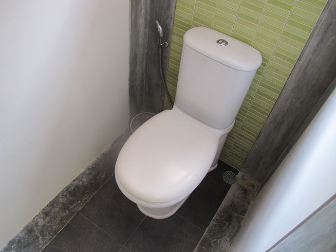 Toilet in the ensuite bathroom