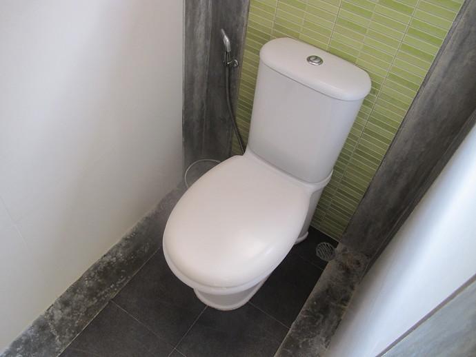 Toilet in the ensuite bathroom