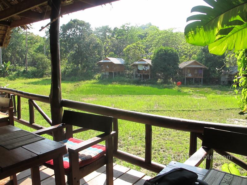 rice paddy restaurant pasai koh yao noi