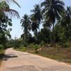 concrete roads on koh yao yai