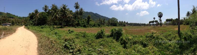 road on koh yao yai