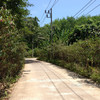 road on koh yao yai