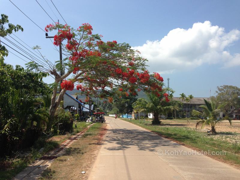 chong lad village koh yao yai