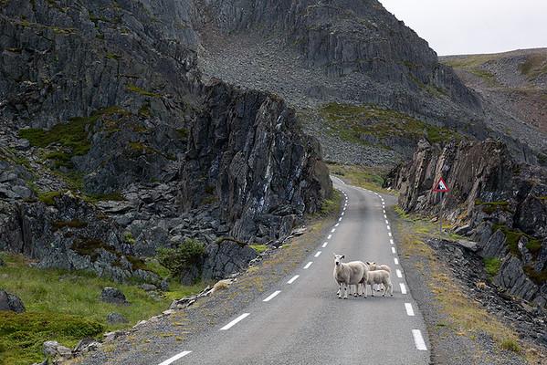 Norway, Varanger