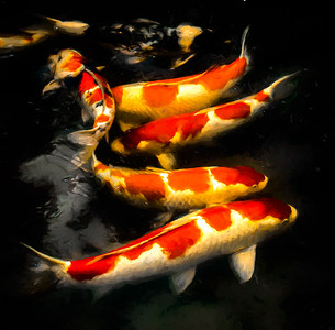 painted koi line up (1 of 1)