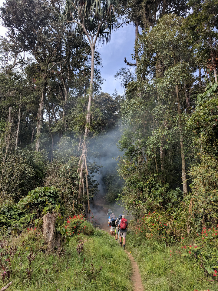 Off and up again past a bonfire of tree cuttings in the jungle.