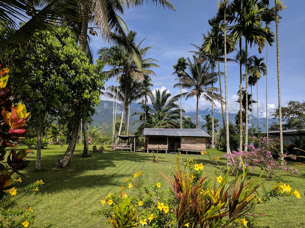 A beautifully kept garden in Kokoda