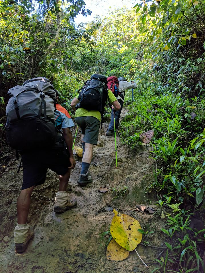 Back to the muddy climb