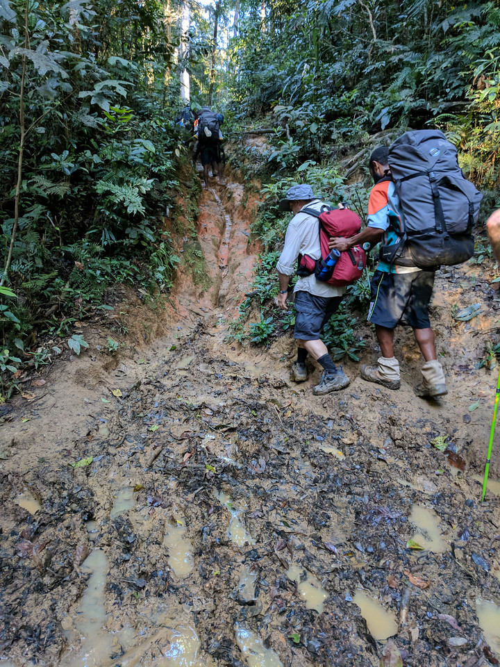 More mud!   We couldn't understand how the porters were so sure footed - constant practice we supposed