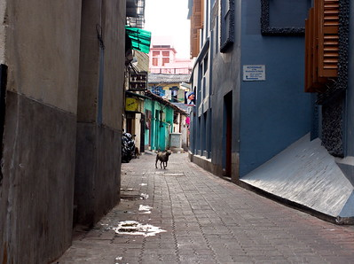 This ordinary looking alleyway is the entrance to the 'Motherhouse' from which Mother Teresa worked for many years.