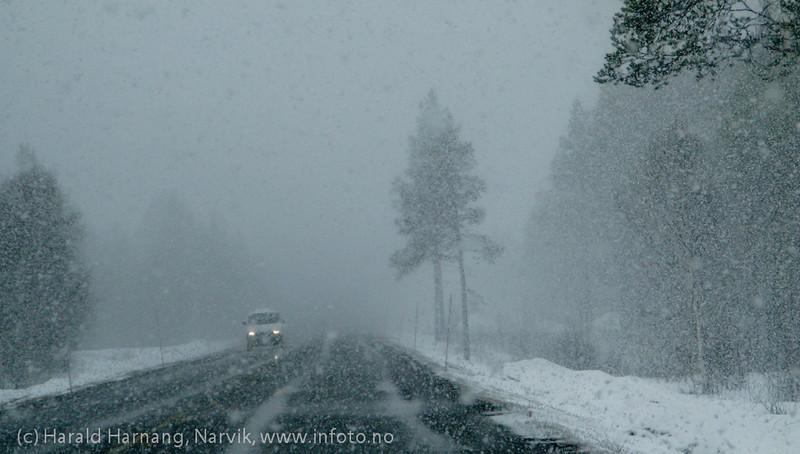 E6, indre Troms, trafikk på veien