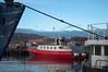 Turistferge ved Narvik havn.