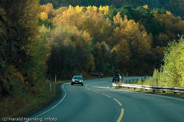 E6, sør for Narvik, like før Skjombrua